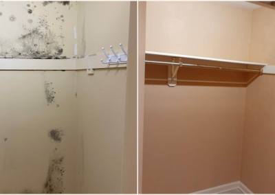 mold removal from closets