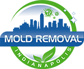 Mold Removal Indianapolis